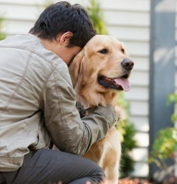 Mourning The Loss Of A Pet