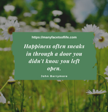 10 Inspirational Quotes In Finding Happiness